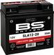 BS Battery  SLA12-20 (FA) Lawn & Garden Series